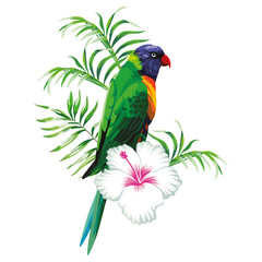 Wall Mural - Green parrot with plants