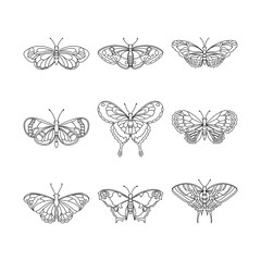 Set of butterfly, black outline, vector illustration.