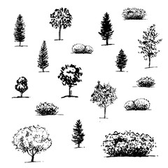hand drawn seamless pattern with graphic trees on white background