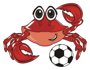 crab, claw, shell, cartoon, marine life, ocean,  red, pink,  sport, play, ball, game, football, soccer