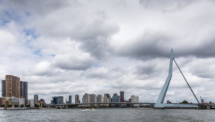 Canvas Prints Swan Skyline Rotterdam