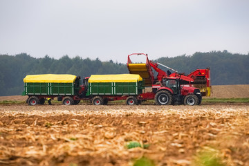 Fototapete - Kartoffelernte, moderne Landtechnik im Einsatz
