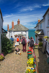 Several tourists stand on a paved path and admire the beauty of the village of Clovelly  in Devon. Tourists have a dog. Along the path there are many bright flowers. England