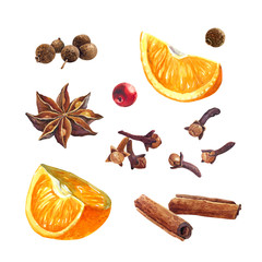 Oranges and winter spices isolated on white watercolor illustration