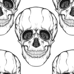 Seamless pattern, background with skull  Outline drawing. Stock line vector illustration.
