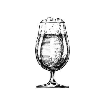 illustration of Beer