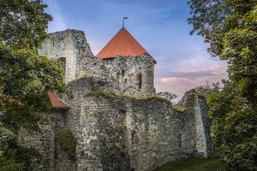 Wall Mural - Medieval livonian castle ruins in Cesis