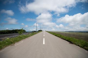 地平線に伸びる道