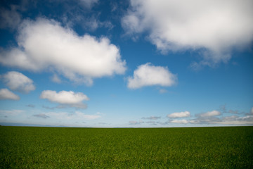 大地に広がる青い空