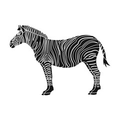 Photo sur Plexiglas Zebra African, desert zebra. Wild cloven-hoofed animal, zebra single icon in black style vector symbol stock illustration web.