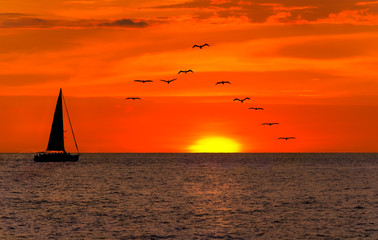 Wall Mural - Sailboat Sunset