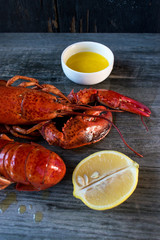 two cooked red lobsters with butter and lemon closeup