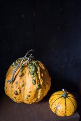Decorative orange gourds on dark background