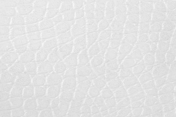 pattern of white leather texture for background and design.