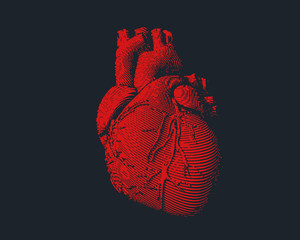 Red human heart illustration on dark BG