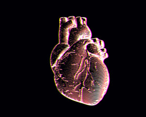 Engraving human heart illustration isolated on black BG