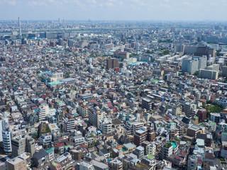 東京 展望