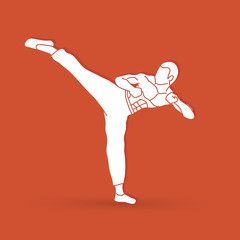 Kung fu, Karate kick graphic vector