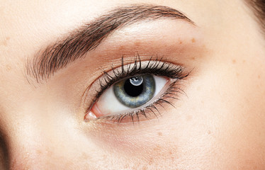 Closeup macro portrait of female face. Human girl eye with day beauty makeup. Woman with perfect skin and freckles