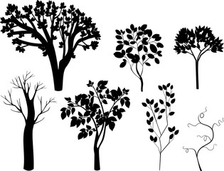 Set of different silhouettes of deciduous trees