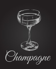 Champagne Glass Hand Drawing Vector Illustration . Alcoholic Drink.