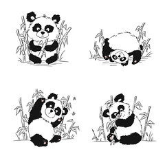 A set of sketches with a panda cub. Panda sitting, eating, playing. Hand drawing.
