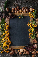 Frame from autumn berries, leaves and nuts with empty vintage chalkboard over brown concrete background. Top view with space for text. Fall harvest concept.
