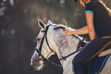 Woman riding a horse on paddock, horsewoman sport wear Fototapete
