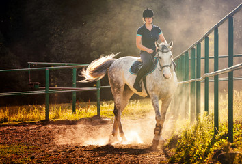 Woman riding a horse in dust on paddock