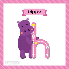 Letter H lowercase cute children colorful zoo and animals ABC alphabet tracing flashcard of Standing Hippo for kids learning English vocabulary and handwriting vector illustration.