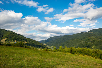 Canvas Prints Hill mountain meadow under clouds in sky