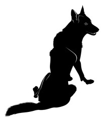 Silhouette of the wolf. Wild wolf. Vector illustration.