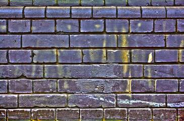 Texture Wall Wallpaper Plastering Ground Background Rough Brick Mason Layer Purple Yellow Urban Street Graffiti Raster Stone Flat House Line Stroke