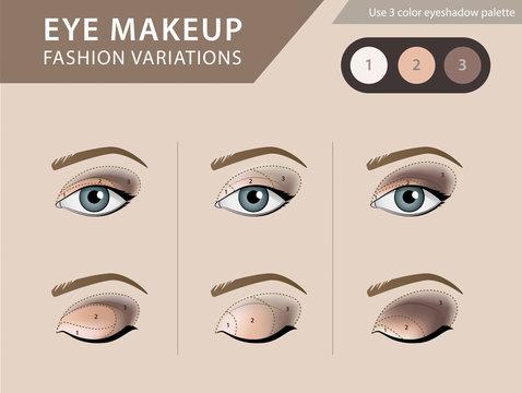 Eye makeup tutorial, eyeshadow vector template