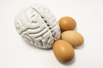 Eggs as food for the brain. The figure of the human brain and chicken eggs lie side by side on a white background, symbolizing healthy food for mental health