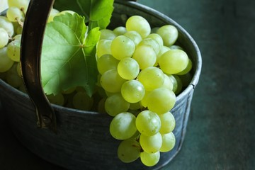 White Table grapes on rustic vintage basket still life, selective focus
