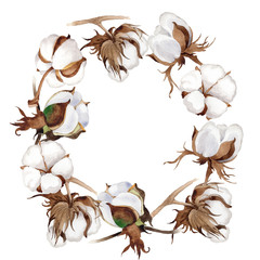 Wildflower cotton flower wreath in a watercolor style. Full name of the plant: cotton. Aquarelle wild flower for background, texture, wrapper pattern, frame or border.