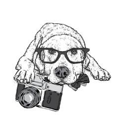 Cute puppy with a vintage camera. Pedigree dog. Labrador.