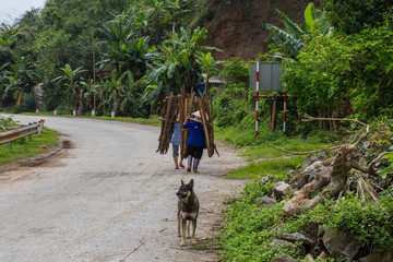 two people carrying wood on road in north Vietnam