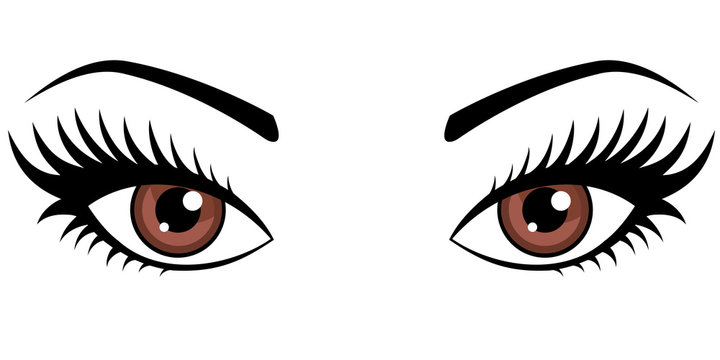 Brown female eyes isolated on white background.