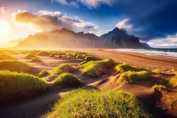 Wall Mural - Beautiful view of the yellow hills glowing by sunlight. Location place Stokksnes cape, Vestrahorn, Iceland, Europe.
