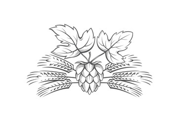 black illustration of hop and barley ear for brewing