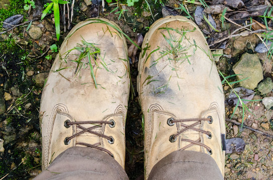 Work boots after a walk in fresly-mowed grass