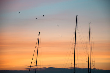 Sailboat masts in harbor at sunset