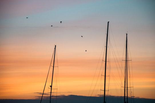 Sailboat masts in harbor at sunset