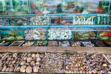 Seafood Market Fish Tanks in Sai Kung, Hong Kong