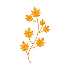 autumn tree branch leaves foliage botanical image vector illustration