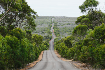 winding road on kangaroo island