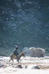 Basotho muleteer crossing a mountain river on a donkey