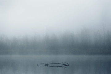 foggy morning in the lake